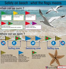 But what means the flags on the beach ?